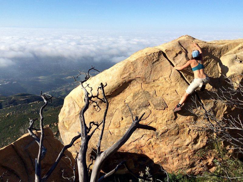 Rock Climbing Photo: One of the best problems along the Arlington Ridge...