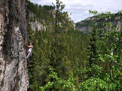 Rock Climbing Photo: Baker on Tomahawk on Trail of Tears wall.  Fantast...