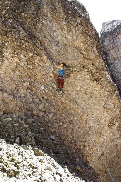 Rock Climbing Photo: Tiff climbing Maple Pickles.