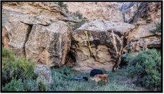Rock Climbing Photo: Itchgasm problem beta in yellow.