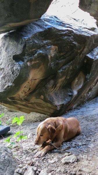 Rock Climbing Photo: Chamber Boulder's east face.