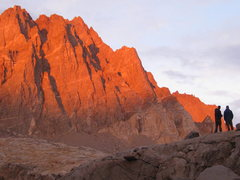 Rock Climbing Photo: Alpenglow on the Palisades from the West.