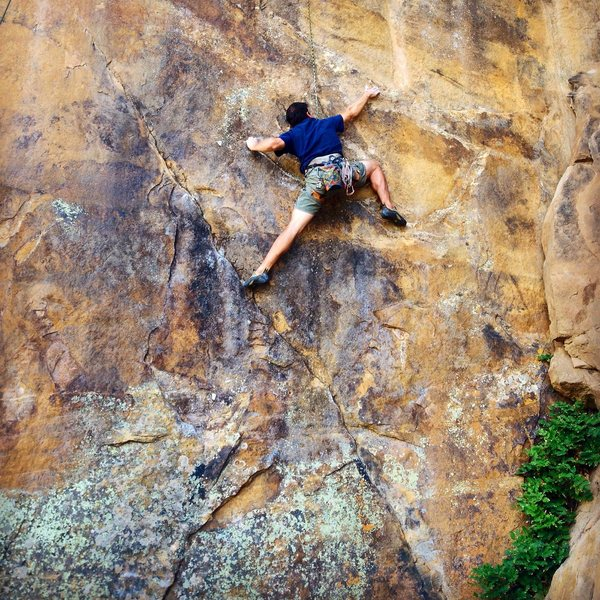 Matt K. reaching big on the incredibly sustained Blue Light Special, 5.12a.