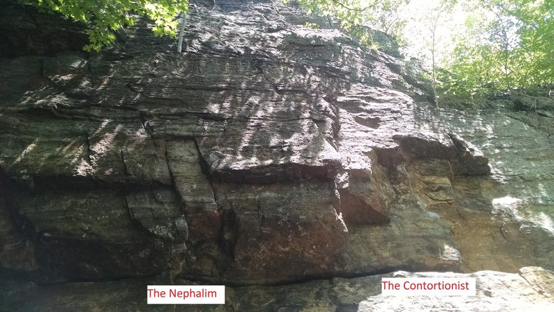 The Contortionist is right-most, The Nephalim just to the left.