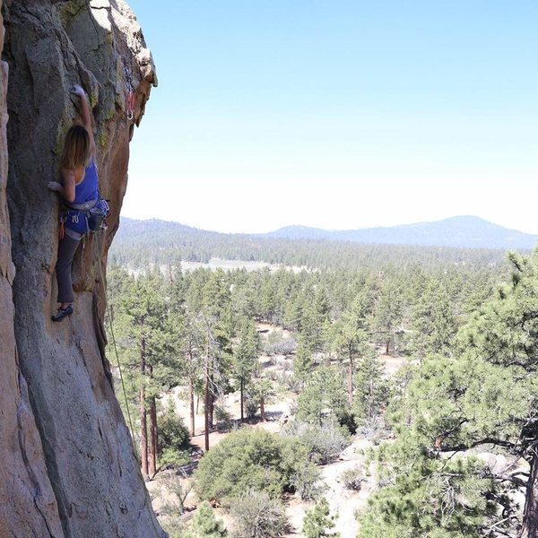 Chaps my Hide at Holcomb Valley Pinnacles