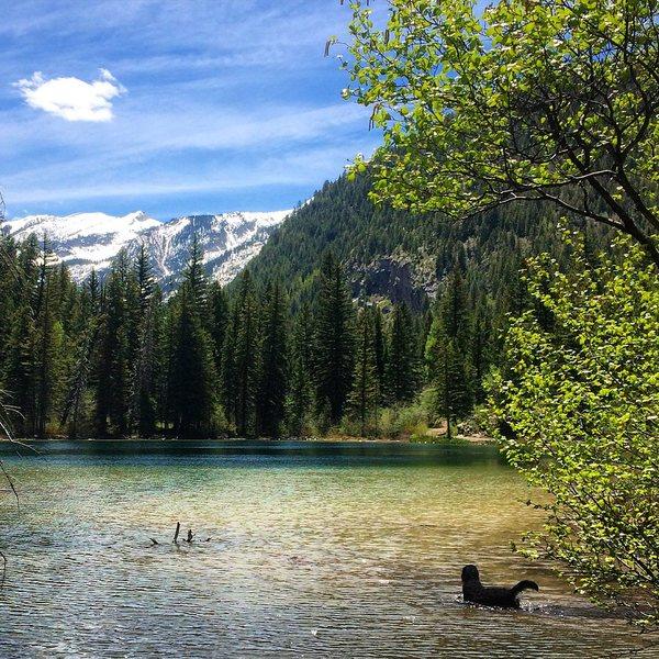 Lizard Lake.
