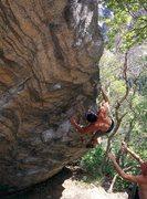 Rock Climbing Photo: Shingles