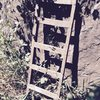 A mysterious ladder at the base of the wall.