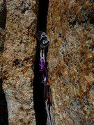 Rock Climbing Photo: An old friend.