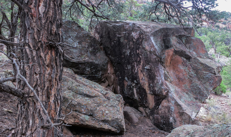 Rock Climbing Photo: Undertree's north and west faces.