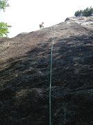 Rock Climbing Photo: At P.1 2 bolt rap anchor