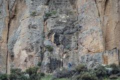 Rock Climbing Photo: Benji on Shitzu (5.7), more like 5.10. Crappy rout...