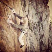Rock Climbing Photo: Michael Goodhue on the crux third pitch.