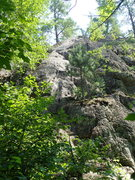 Rock Climbing Photo: View from the forest.