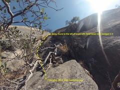 Rock Climbing Photo: Half way point next to white tree (climb crack to ...