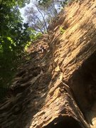 Rock Climbing Photo: PMRP at Red River Gorge