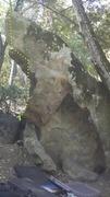 Rock Climbing Photo: The Shark