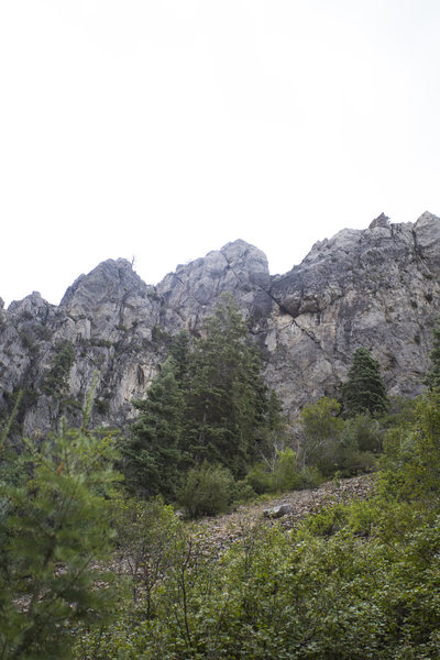 Rock Climbing Photo: View from the trail.