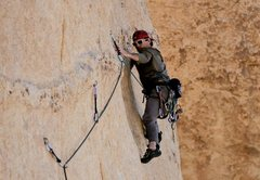 Rock Climbing Photo: Horizontal dike sport route in J-Tree. Photo credi...