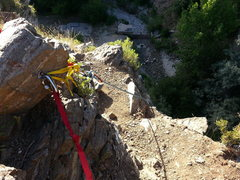 Rock Climbing Photo: Looking down upon Stone Creek from the main anchor...