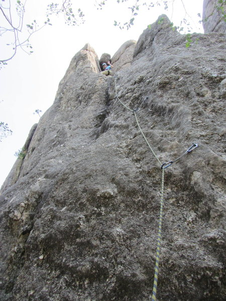 Anne Meyer leading Second Hand Rose Arete