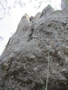 Rock Climbing Photo: Anne Meyer leading Second Hand Rose Arete