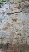 Rock Climbing Photo: 3 bolts