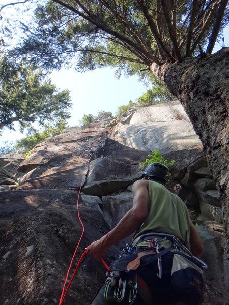 Rock Climbing Photo: Peanuts to Serve You