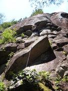 Rock Climbing Photo: Baby Tapir