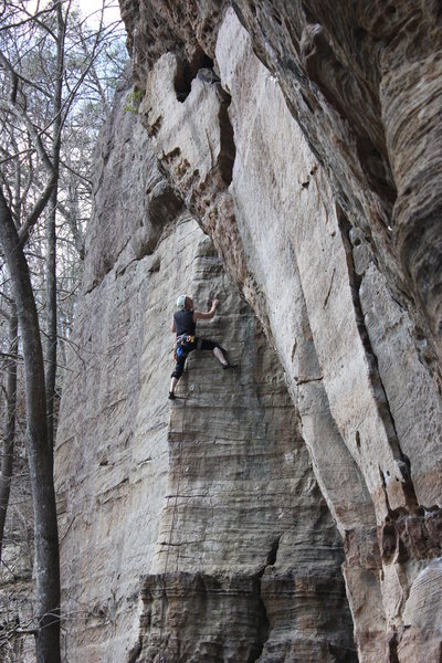 Wonkaholic: Red River Gorge KY