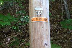 Rock Climbing Photo: Pole #37