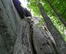 Rock Climbing Photo: Carol on Like Old Times