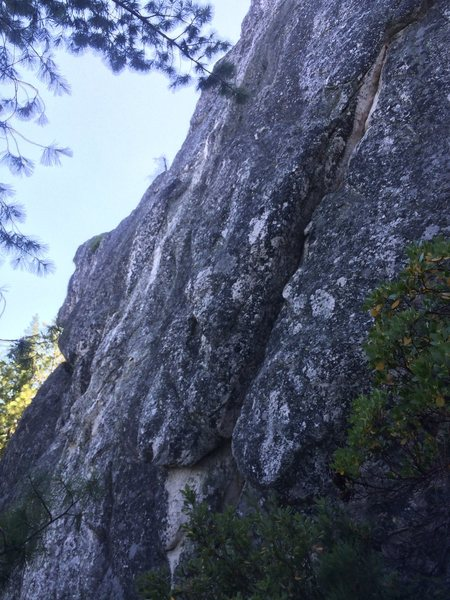 Rock Climbing Photo: bulldog