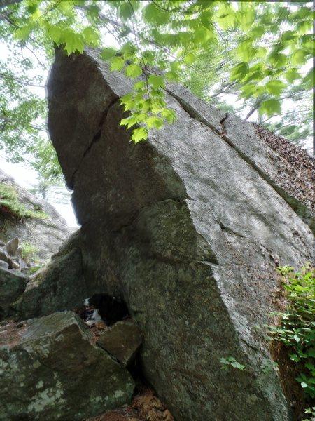 Rock Climbing Photo: the pompadour