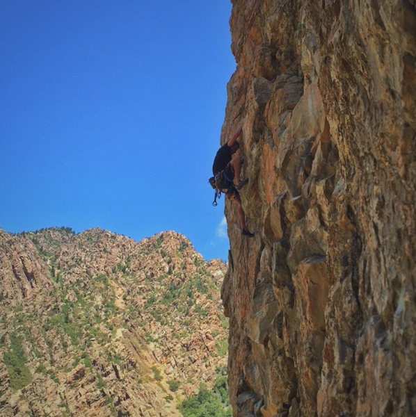 Rock Climbing Photo: Will Hurlbut on the finishing moves of Better Than...