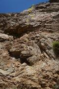 Rock Climbing Photo: Wonderful route