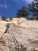 Rock Climbing Photo: The crack is in the middle below the tree at the t...