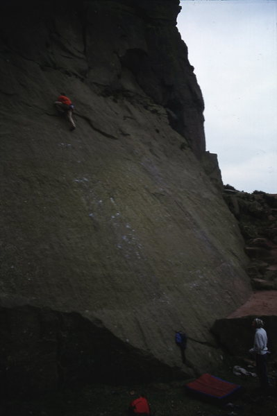 E56a at millstone. Sex Dwarf or something