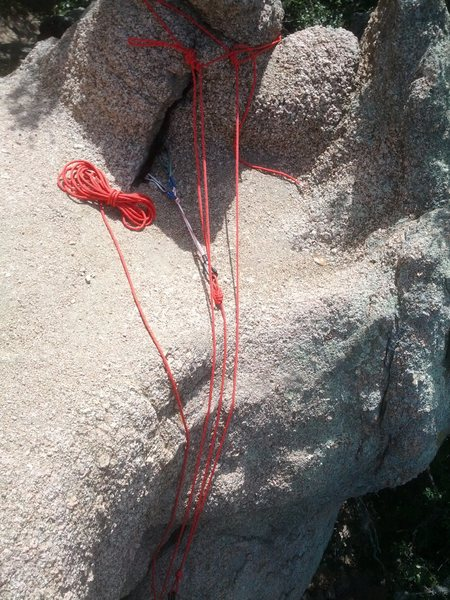 Rock Climbing Photo: Natural gear anchor used