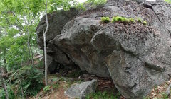 Rock Climbing Photo: The Geo Cache boulder. A steep crack in the center...