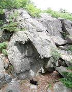 Rock Climbing Photo: Looking at the Millard boulder. A handful of good ...
