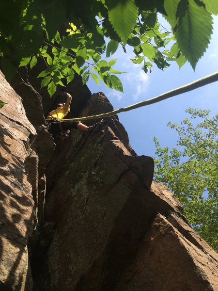 Rock Climbing Photo: Navigating the roof on the FA of Sammy-Jo Traceyvi...