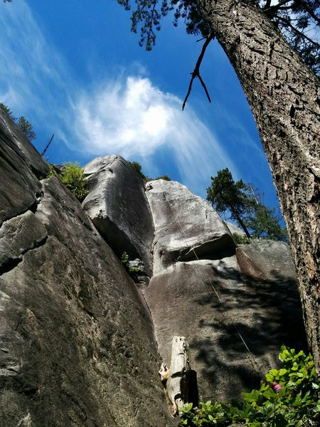 Rock Climbing Photo: Sonya reaching the top