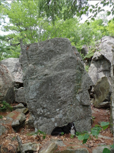 Rock Climbing Photo: Downhill side of the Buried Treasure boulder. 12' ...