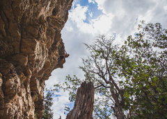 Rock Climbing Photo: Reaching the chains