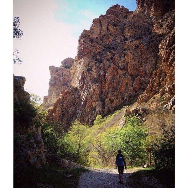 Rock Climbing Photo: Rock Canyon, Utah