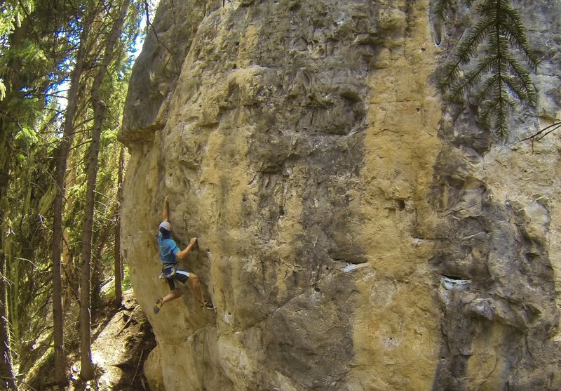 Booze Cruize, 5.11d<br> <br> A short, steep and powerful route that requires a strict sequence of moves that must be systematically completed before the pump kills your chance to send.