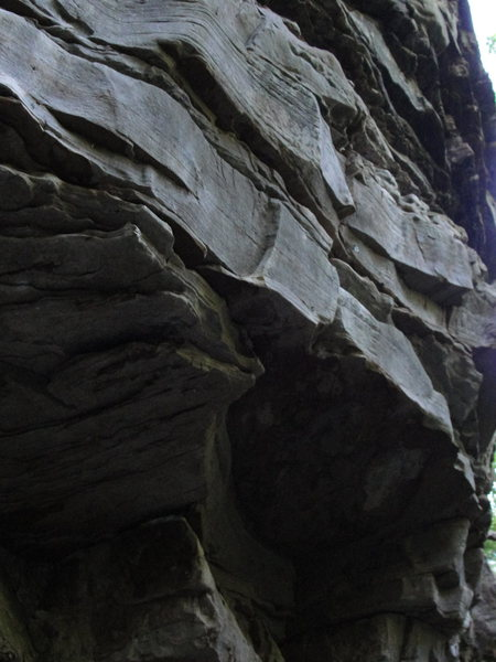 Rock Climbing Photo: Mongo Fury- 12d.  Goes through low horizontals the...