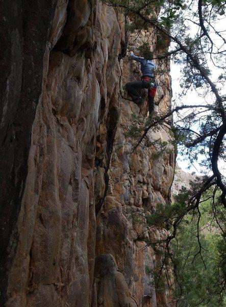 Rock Climbing Photo: Eve on Memorial Day