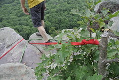 Rock Climbing Photo: Well.... the remainder of this TR anchor, not visi...